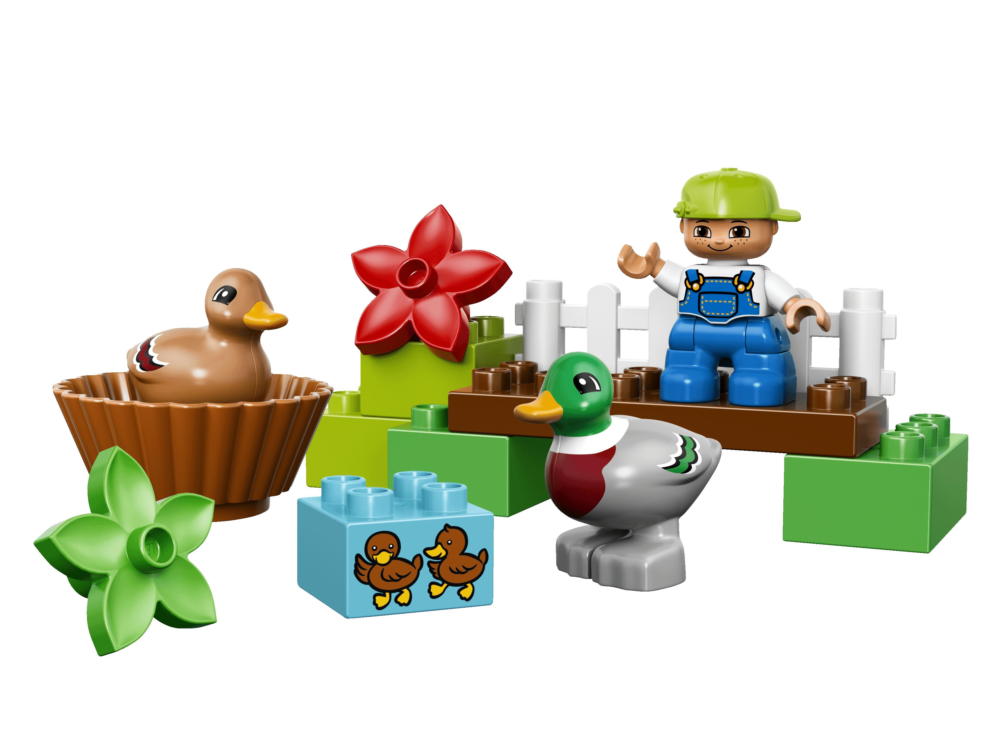 LEGO Divoke kachny